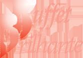 Logo Buffet Brilhante